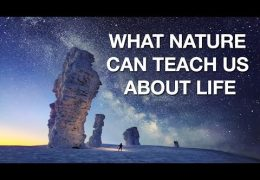 Why We're Inspired By Nature!