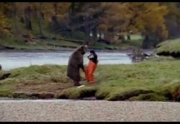 "John West Salmon ""Bear Fight"" ad"